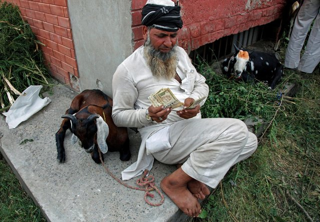 A man counts Indian rupees after selling a goat at a livestock market on the eve of the Muslim festival of Eid al-Adha in Chandigarh, India September 12, 2016. (Photo by Ajay Verma/Reuters)