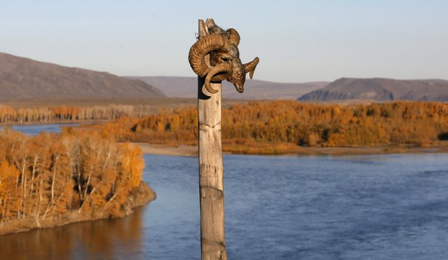 The head of a mountain ram is attached to a wooden column at the site used for shamans' rituals in the Aldyn Bulak area on the bank of the Yenisei River during sunset outside the village of Elegest, Tuva region, Southern Siberia, Russia, October 7, 2015. (Photo by Ilya Naymushin/Reuters)