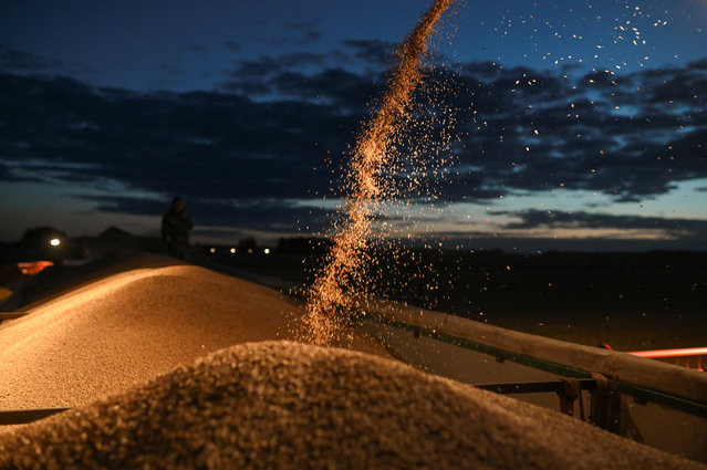 A combine loads a truck with wheat during harvesting in a field of Triticum farm in Omsk region, Russia on September 16, 2020. (Photo by Alexey Malgavko/Reuters)