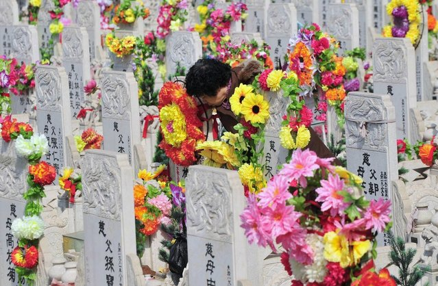 A resident leans her face against the tombstone of a deceased relative at a public cemetery a day ahead of the Qingming Festival, or Tomb Sweeping Day, in Shenyang, Liaoning province of China, April 3, 2013. The festival, which falls on April 4 this year, is a day for the Chinese to remember and honour one's ancestors. According Xinhua News Agency, the Ministry of Civil Affairs has issued China's first service standard for public cemeteries to better regulate an industry that faces increasing pressure with China's ageing society. (Photo by Reuters/Stringer)
