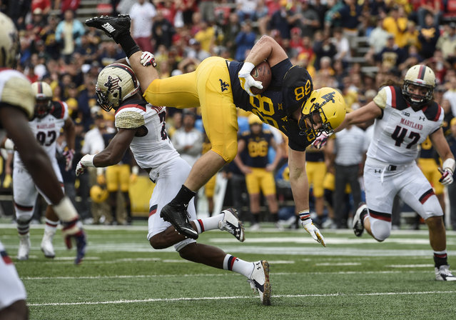 Maryland Terrapins defensive back Sean Davis (21) upends West Virginia Mountaineers running back Cameron Nash (38) in the first quarter during the game against West Virginia at Byrd Stadium on Saturday, September 13, 2014. (Photo by Toni L. Sandys/The Washington Post)