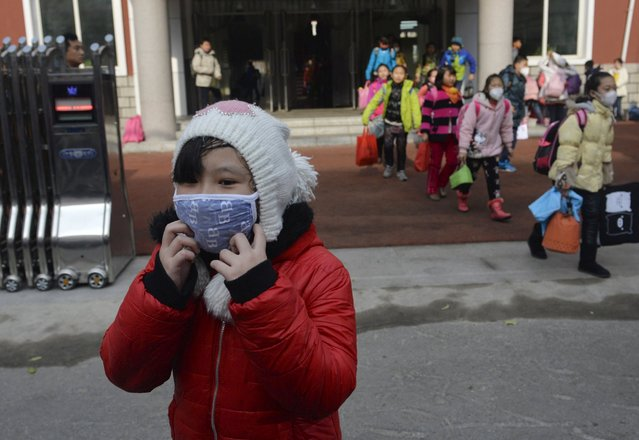 School children wearing masks leave school early at noon due to heavy air pollution, at a primary school in Shenyang, Liaoning province, November 13, 2015. According to Xinhua News Agency, lingering smog has disrupted traffic in northeast China's Liaoning Province, closing highways and delaying trains. (Photo by Reuters/Stringer)