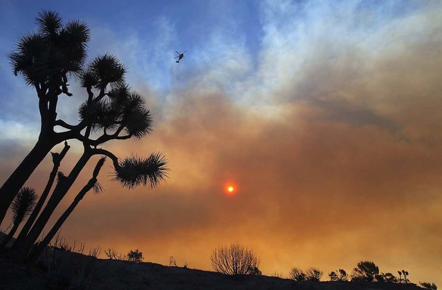 Thick smoke blankets California's Antelope Valley as air assets move in to battle a brush fire in the hills west of Palmdale, 2010. (Photo by Brian Vander Brug/Los Angeles Times/MCT)