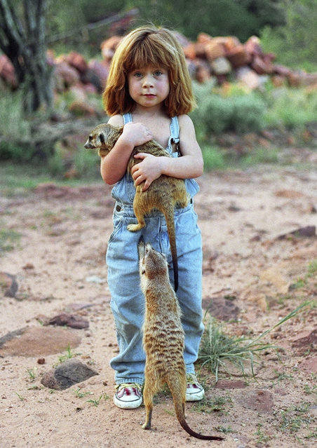 Tippi, age 6, with two meerkats in Namibia, South Africa, 1996. (Photo by Sylvie Robert/Barcroft Media)