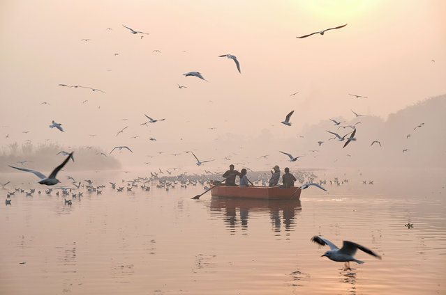 Indian women take pictures on a boat as migratory birds fly overhead on the Yamuna River on a morning of heavy air pollution in New Delhi on November 20, 2018. Smog levels spike during winter in Delhi, when air quality often eclipses the World Health Organization' s safe levels. Cooler air traps pollutants – such as from vehicles, building sites and farmers burning crops in regions outside the Indian capital – close to the ground. (Photo by Noemi Cassanelli/AFP Photo)