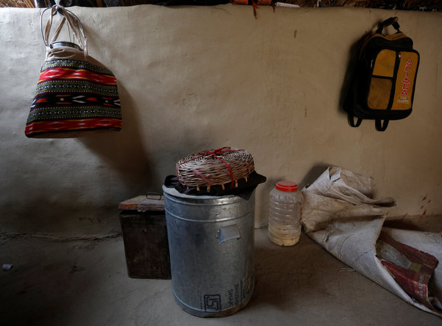 A snake pot is seen inside a house of a snake charmer in Jogi Dera (snake charmers settlement), in the village of Baghpur, in the central state of Uttar Pradesh, India November 11, 2016. (Photo by Adnan Abidi/Reuters)