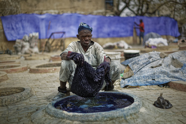 In this photo taken Tuesday, February 19, 2019, a craftsman dyes cloth with indigo in one of the ancient dye pits of Kofar Mata in Kano, northern Nigeria. The dye pits were founded in 1498 and are said to be the last ones of their kind but some of the craftsmen grumble about competition from Chinese fabrics that have entered the markets and sell for half the price. (Photo by Ben Curtis/AP Photo)