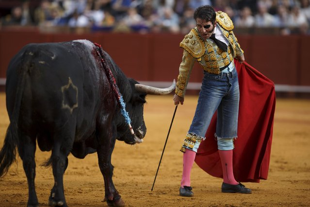 Spanish matador Juan Jose Padilla looks at a bull during a bullfight at The Maestranza bullring in the Andalusian capital of Seville, southern Spain April 25, 2015. (Photo by Marcelo del Pozo/Reuters)