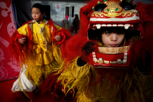Young performers put their lion dance costumes as they go onto the stage at the Longtan park as the Chinese Lunar New Year, which welcomes the Year of the Rooster, is celebrated in Beijing, China January 29, 2017. (Photo by Damir Sagolj/Reuters)