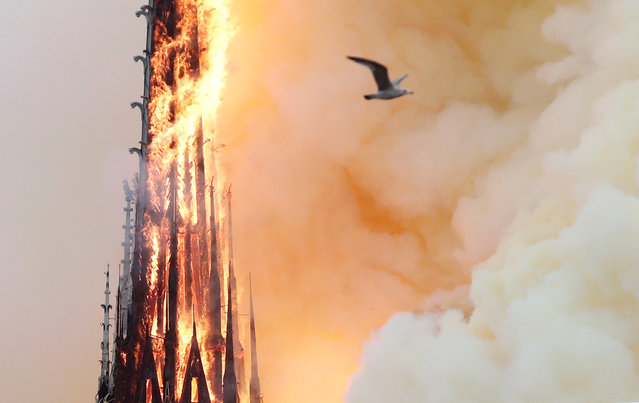 Smoke billows as fire engulfs the spire of Notre Dame Cathedral in Paris, France April 15, 2019. (Photo by Benoit Tessier/Reuters)