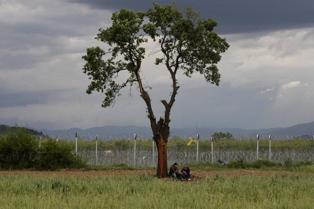 Two refugees sit under a tree next to a makeshift camp for migrants and refugees at the Greek-Macedonian border near the village of Idomeni, Greece, April 25,  2016. (Photo by Alexandros Avramidis/Reuters)
