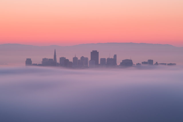 """City in the Sky"". San Francisco down town in the sea of clouds. Photo location: San Francisco, USA. (Photo and caption by Shumon Saito/National Geographic Photo Contest)"