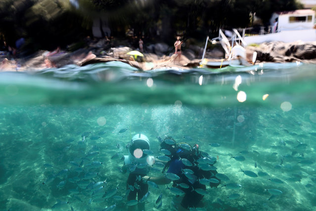 Divers are seen in Underwater Park in Pula, Croatia, August 1, 2017. (Photo by Antonio Bronic/Reuters)