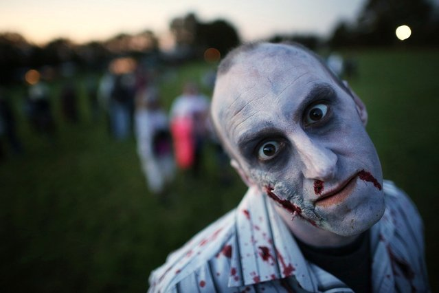 A visitor to the Shocktober Fest dressed as zombie poses at Tulleys Farm on October 6, 2012 in Turners Hill, England. People dressed as zombies from around the United Kingdom have converged on Tulleys Farm in an attempt to set a new Guinness World Record for the most zombies together in one place.  (Photo by Peter Macdiarmid)