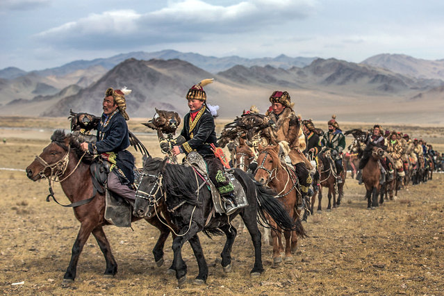 With their wings at full length, these beautiful golden eagles soar through the skies in a glorious training session to hunt their prey. Others sit on the arms of their owners and trainers. Batzaya Choijiljav, 41, from Mongolia has taken these magnificent pictures at the annual traditional Kazakhs festival, October 2015. (Photo by Batzaya Choijiljav/Caters News)