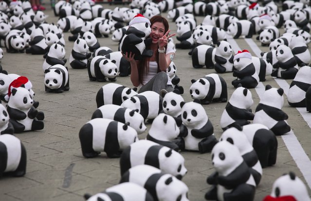 A Malaysia women smile as she seat between Panda sculptures during 1600 Pandas World Tour in Malaysia  on December 21, 2014 in Kuala Lumpur, Malaysia. 1600 pandas made by French artist Paulo Grangeon jointly with WWF with recycled paper are being exhibited in Kuala Lumpur. The paper-made panda exhibition aims at advocating more people to participate in protecting endangered animals. (Photo by Samsul Said/Getty Images)