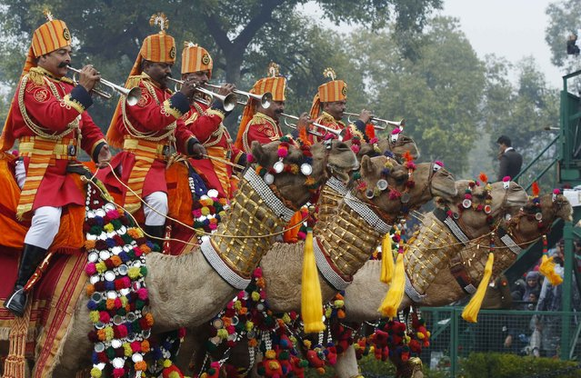 A military marching band riding camels performs in India's Republic Day parade in New Delhi January 26, 2015. (Photo by Jim Bourg/Reuters)