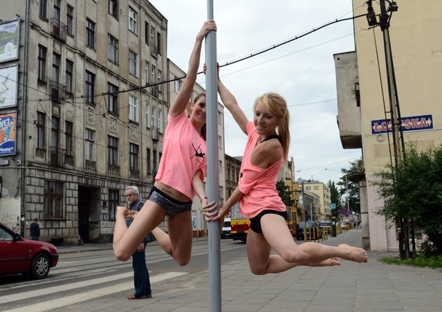 "Members of the ""Avocadoo"" club perform a pool dance on a street sign pole in Lodz, central Poland on June 27, 2013. The event promotes new way of gymnastics in Poland. (Photo by Janek Skarzynski/AFP Photo)"
