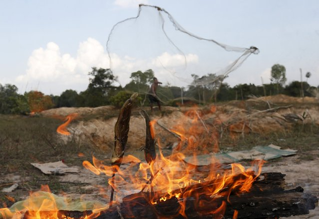 Fish are burned as a man casts a fishing net into a pond at a rice paddy field in Kampong Chhnang province, Cambodia, January 10, 2016. (Photo by Samrang Pring/Reuters)