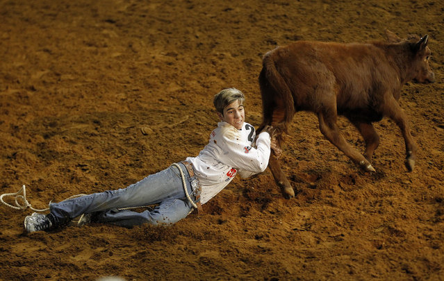 The calf scramble at the Fort Worth stock show and rodeo in Texas, US on February 3, 2016. (Photo by Khampha Bouaphanh/ZUMA Press/Corbis)