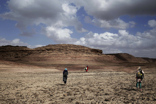 "In this March 30, 2019 photo, Umm Yasser, center, leads women on a trek in the mountains, near Wadi Sahw, Abu Zenima, in South Sinai, Egypt. Umm Yasser is breaking new ground among the deeply conservative Bedouin of Egypt's Sinai Peninsula. Women among the Bedouin almost never work outside the home, and even more rarely do they interact with outsiders. But Umm Yasser is one of four women from the community who for the first time are working as tour guides. ""It is against our culture, but women need jobs"", the 47-year-old Umm Yasser said. ""People will make fun of us, but I don't care. I'm a strong woman"". They are part of Sinai Trail, a unique project in which local Bedouin tribes came together aiming to develop their own tourism. Founded in 2015, the project has set up a 550-kilometer (330-mile) trail through the remote mountains of the peninsula, a42-day trek through the lands of eight different tribes, each of which contributes guides. The project has been successful in bringing some income to the tribes, who often complain of being left out of the major tourism development of the southern Sinai, home to beach resorts and desert safaris. Until now, all the project's guides were men. There are some conditions. The tourists can only be women, and the tours can't go overnight. Each day before the sun sets, the group returns to the Hamada's home village in Wadi Sahu, a narrow desert valley. The organizers also urge the tourists to photograph the guides only when they are wearing a full veil over the face that covers even the eyes with mesh. (Photo by Nariman El-Mofty/AP Photo)"