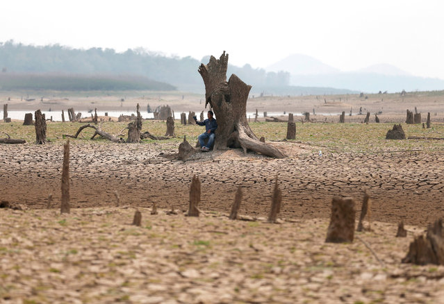 A photo made available on 14 March 2016 shows a Thai villager takes selfie photograph on drought parched land at the dried up Mae Chang reservoir in Lampang province, northern Thailand, 12 March 2016. The ruined village including ancient temple had been underwater for 34 years since the Mae Chang reservoir was built in 1982, the area has now re-emerged after water in the reservoir dried up caused by the severe drought. Thailand is facing the worst drought in decades hardest hit by El Nino phenomenon combined with seasonal hot weather. (Photo by Rungroj Yongrit/EPA)