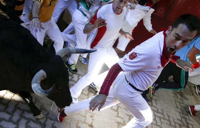 Runners lead a Fuente Ymbro fighting bull at the entrance to the bullring during the fourth running of the bulls at the San Fermin festival in Pamplona, northern Spain, July 10, 2015. (Photo by Joseba Etxaburu/Reuters)