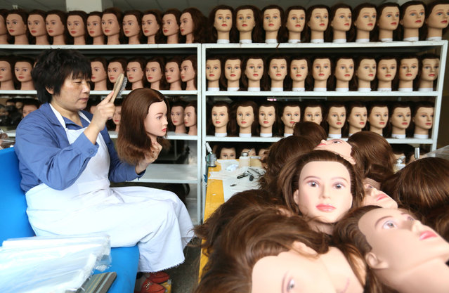 An employee combs a wig as she works at a wig factory in Qingdao, Shandong province, April 11, 2016. (Photo by Reuters/China Daily)