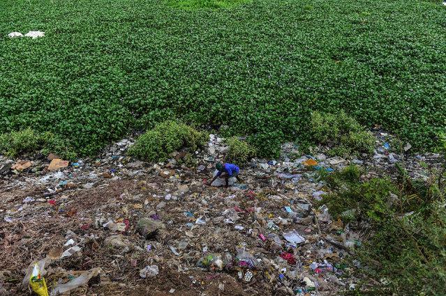 A Bangladeshi man collects objects from garbage dump near the Buriganga river in Dhaka on June 11, 2017. (Photo by Munir Uz Zaman/AFP Photo)