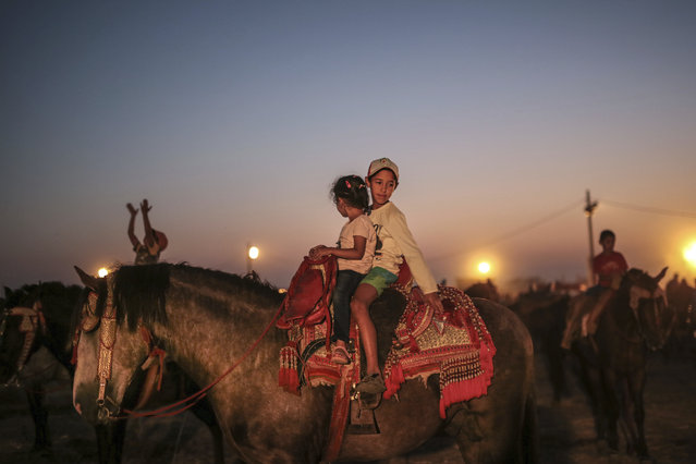 In this Thursday, August 17, 2017 photo, children play on horses, after the end of Tabourida, a traditional horse riding show also known as Fantasia, in Mansouria, near Casablanca, Morocco. (Photo by Mosa'ab Elshamy/AP Photo)