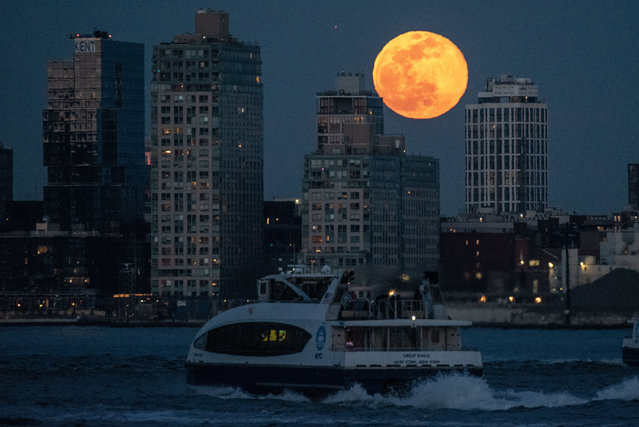 A Full Worm Supermoon rises over the Williamsburg Waterfront Apartments in Brooklyn, New York on March 9, 2020. (Photo by Erik Pendzich/Rex Features/Shutterstock)