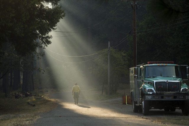 A firefighter walks through smoke while battling the King Fire near Fresh Pond, California September 17, 2014. (Photo by Noah Berger/Reuters)