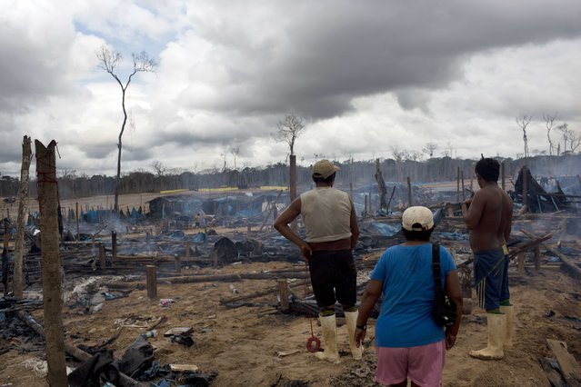 In this November 12, 2014 photo, small scale gold miners stand looking at the remains of their mining camp, scorched by authorities as part of an operation to eradicate illegal gold mining camps in the area known as La Pampa, in Peru's Madre de Dios region. (Photo by Rodrigo Abd/AP Photo)