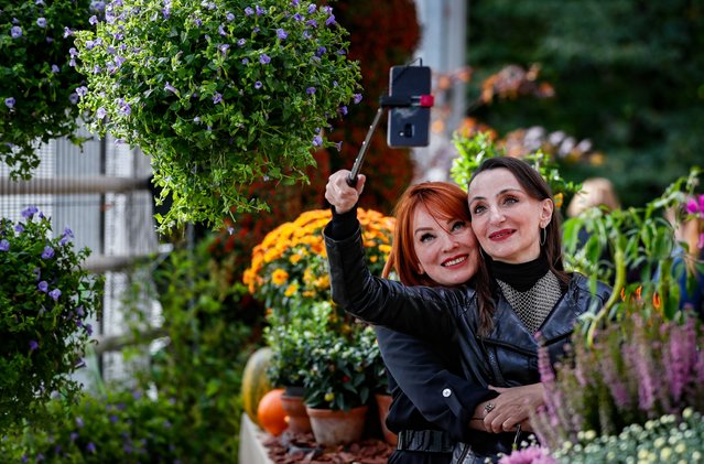 Women take a selfie during the annual festival Colors of Autumn in the Botanical Garden of Moscow State University in Moscow, Russia 14 September 2020. More than 50 new and rare varieties of chrysanthemums and  the largest pumpkins in Russia are presented at the festival. The exposition will be constantly changing and updated until the end of the festival. (Photo by Yuri Kochetkov/EPA/EFE)
