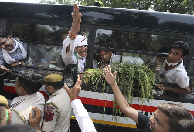 Member of India's opposition Congress party shout slogans as they are detained during a protest against agriculture bills in New Delhi, India, Monday, September 21, 2020. Amid an uproar in Parliament, Indian lawmakers on Sunday approved a pair of controversial agriculture bills that the government says will boost growth in the farming sector through private investments. (Photo by Manish Swarup/AP Photo)