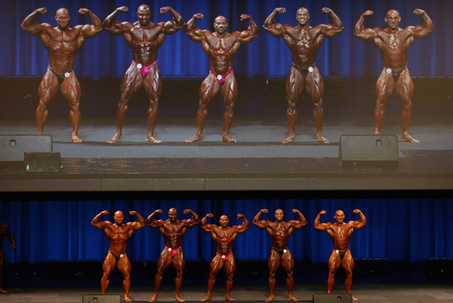 Ben Pakulski of Canada, Toney Freeman of the USA, Dexter Jackson of the USA, Edward Nunn of the USA and Ivan Sadek of Australia pose during the IFBB Australia Pro Grand Prix at The Plenary on March 9, 2013 in Melbourne, Australia.  (Photo by Robert Cianflone)