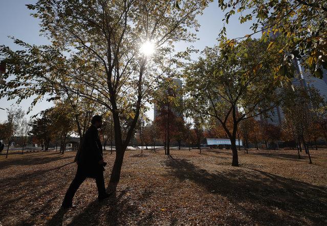 A man wearing a face mask as a precaution against the coronavirus, walks near autumn colored trees in Seoul, South Korea, Wednesday, November 11, 2020. (Photo by Lee Jin-man/AP Photo)