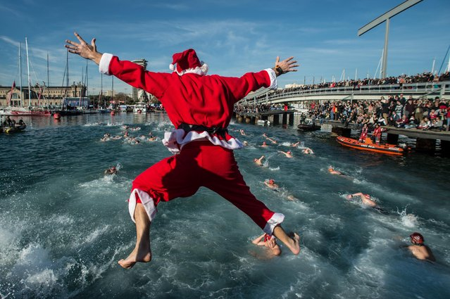 A competitor in Christmas fancy dress jumps into the sea during the 105th Barcelona Traditional Christmas Swimming Cup at the Old Harbour of Barcelona on December 25, 2014 in Barcelona, Spain. The Copa Nadal is organised by the Barcelona Swimming Club and involves competitors swimming across some 200 metres of water in the harbour. Launched in 1908 the event has only been suspended three times when the Spanish Civil War interrupted proceedings between 1936 and 1938. (Photo by David Ramos/Getty Images)