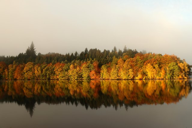 Autumnal foliage is reflected on Loch Faskally, Pitlochry, Scotland, Britain on October 17, 2020. (Photo by Russell Cheyne/Reuters)