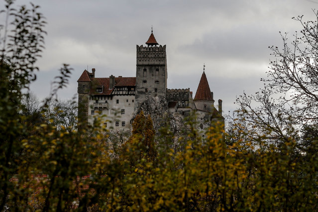 """Exterior view of Bran Castle's northern facade, portrayed by Gothic novel writer Bram Stoker as the home of count Dracula, in Brasov county, Romania, October 31, 2016. A Canadian brother and sister are passing Halloween night curled up in red velvet-lined coffins in the Transylvanian castle that inspired the Dracula legend, the first time in 70 years anyone has spent the night in the gothic fortress. The siblings from Ottawa bested 88,000 people who entered a competition hosted by Airbnb to get the chance to dine and sleep at the castle in Romania. Events manager Tami Varma and her brother Robin, a PhD student, are the grandchildren of Devendra P. Varma, a scholar of English gothic tales and an expert in vampire lore who visited the castle in 1971. They were asked in the competition: """"What would you say to Dracula if you met him?"""" and Tami Varma answered that their late grandfather """"was the world's leading expert in Gothic Literature, and was considered to be an expert in Dracula. ... We would do just about anything to stay as a guest with the original vampire who inspired him"""". (Photo by Octav Ganea/Reuters/Inquam Photos)"""