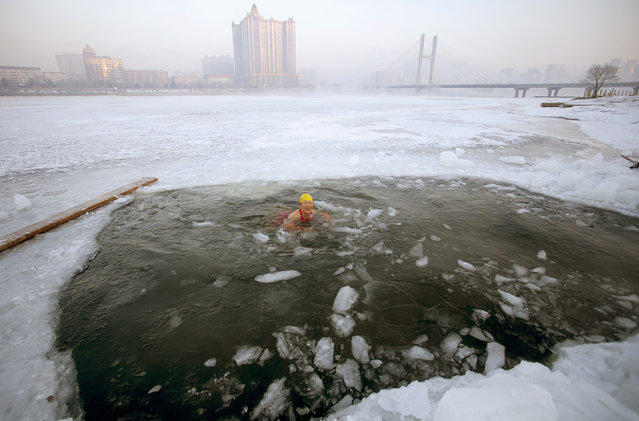 A winter swimmer swims in icy waters after breaking the ice of the frozen Songhua River, in Jilin, Jilin province February 11, 2015. (Photo by Reuters/Stringer)