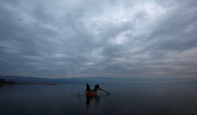 Fishermen collect their catch from a net at Dojran Lake, Macedonia, January 4, 2017. (Photo by Ognen Teofilovski/Reuters)