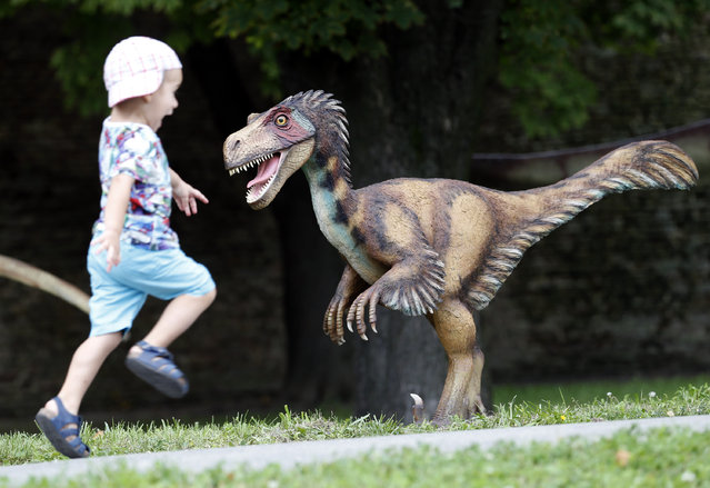 """A boy runs past one of the exhibits during the Dinosaurs exhibition in Belgrade, Serbia, Thursday, August 21, 2014. """"Dino Park"""" has opened at Belgrade's Kalemegdan Fortress. (Photo by Darko Vojinovic/AP Photo)"""