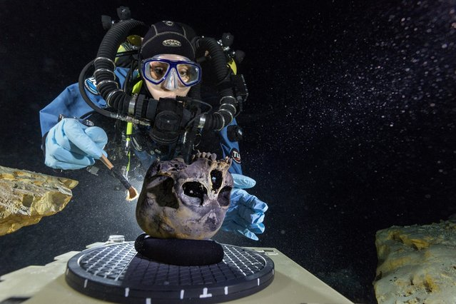 Diver Susan Bird works on the remains of a 12,000- to 13,000-year-old teenage girl found at the bottom of the Hoyo Negro underwater cave in this photo provided by National Geographic on May 15, 2014. (Photo by Paul Nicklen/Reuters/National Geographic)