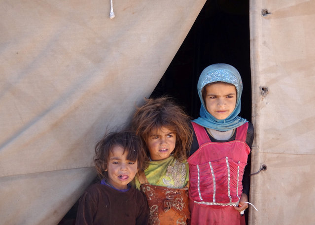 Girls stand at the entrance to their tent at a camp for internally displaced people in the northwestern city of Saada, Yemen January 30, 2017. (Photo by Naif Rahma/Reuters)