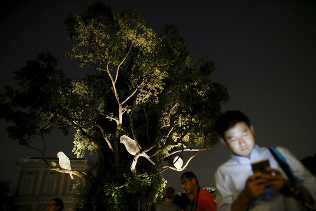 People walk past an art installation of three bird sculptures, Le Desir Et La Menace, by French artist Cedric le Borgne during a media preview of the Singapore Night Festival in Singapore August 19, 2015. The Singapore Night Festival which features performances and light installations will take place on the last 2 weekends of August. (Photo by Edgar Su/Reuters)