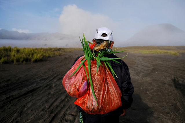Mount Bromo spews ash in the distance as a Hindu villager carries offerings ahead of Kasada ceremony, when villagers and worshippers throw offerings such as livestock and other crops into the volcanic crater of Mount Bromo, in Probolinggo, Indonesia, July 20, 2016. (Photo by Reuters/Beawiharta)