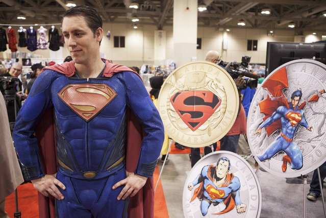 Justin Monk dressed as Superman was on hand to unveil four new collector coins featuring Superman at Fan Expo in Toronto on Friday, August 29, 2014. (Photo by Jesse Johnston/The Canadian Press)
