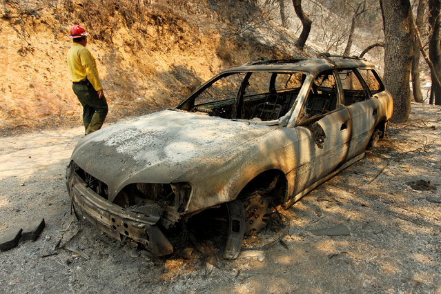 Tom Stokesberry with the U.S. Forest Service walks past a destroyed car after the Soberanes Fire burned through the Palo Colorado area, north of Big Sur, California, July 31, 2016. (Photo by Michael Fiala/Reuters)