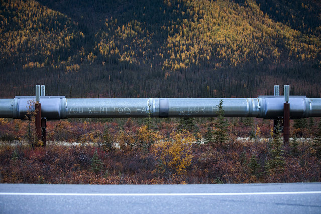 A message is scrawled on the Trans-Alaska Pipeline along the Dalton Highway near Wiseman, Alaska, USA, 04 September 2017. (Photo by Jim Lo Scalzo/EPA)